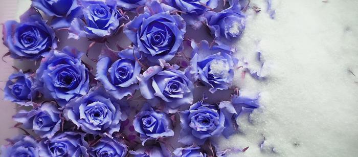 blue 首圖
