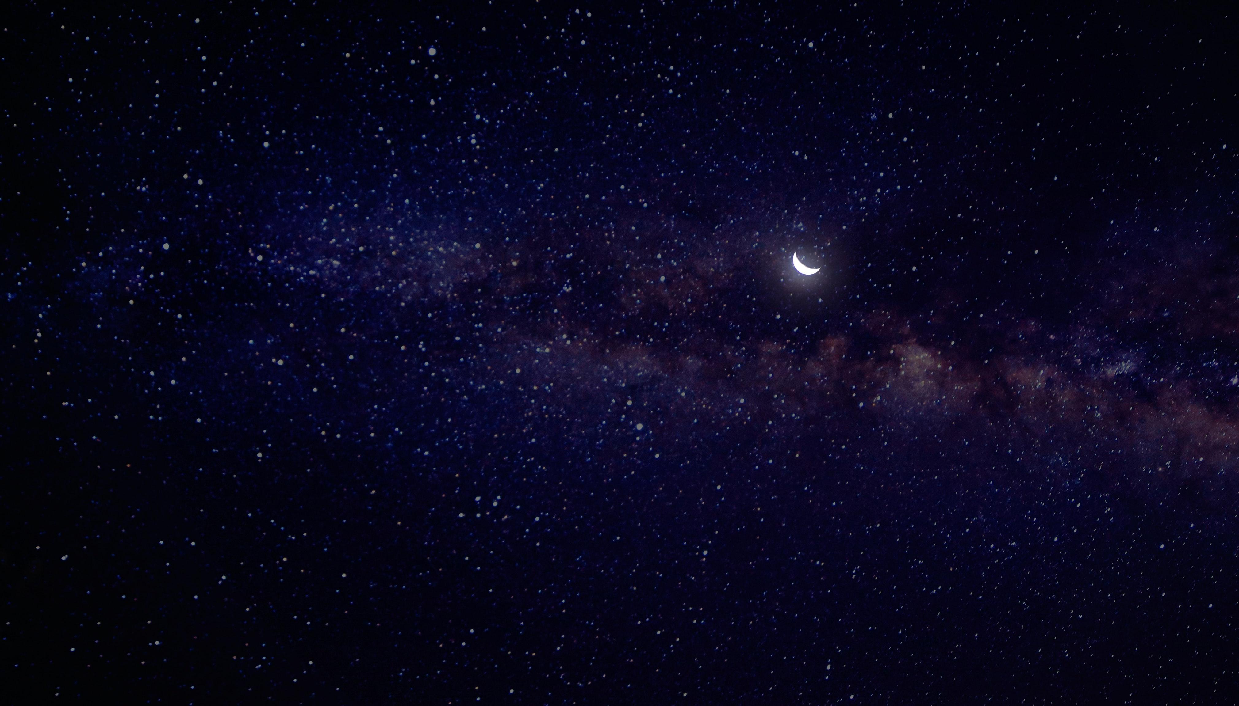 海星星 首圖